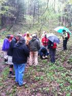Holston Rivers members can be found in Konnarock at the Mount Rogers Naturalist Rally.